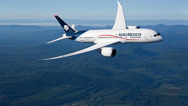 La decisión llega casi cinco años después de haber iniciado la operación entre la Ciudad de México y Caracas. (Aeromexico)