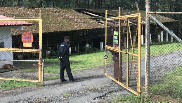 La policía presidencial y efectivos de Migración Panamá custodian la entrada del campamento Los Planes, Gualaca. (14ymedio)
