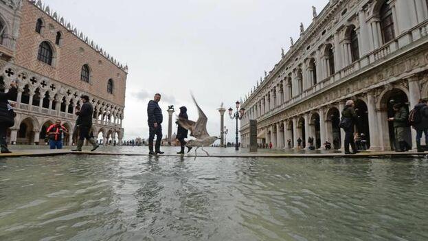 La previsión es que la marea aumente en 155 o 160 centímetros en torno a las 13.00 hora local. (EFE)