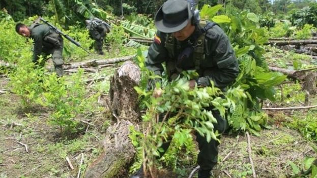 El ataque se produjo durante una protesta cocalera contra la erradicación de cultivos. (Peru21)