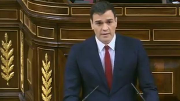 El discurso del líder socialista Pedro Sánchez este viernes en el Congreso. (Fotograma)