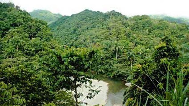 Parque Nacional Alejandro de Humboldt, área protegida y declarada Patrimonio Natural de la Humanidad por la Unesco. (CC)