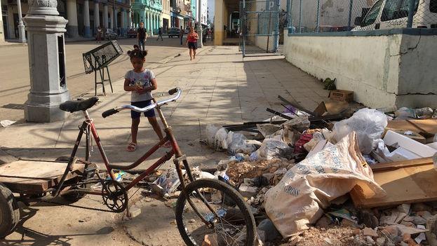 Basura en La Habana tras el huracán Irma 4