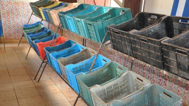 El mercado La Calzada en la ciudad de Cienfuegos con las tarimas vacías tras el paso del huracán Irma y la imposición de precios topados. (Cedeño/5 de Septiembre)