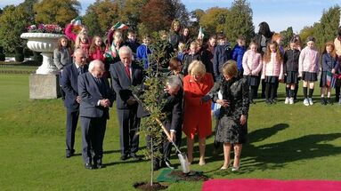 Díaz-Canel planta un roble, símbolo de la amistad en Irlanda, en los jardines de la residencia del jefe de Estado. (presidencia Cuba)