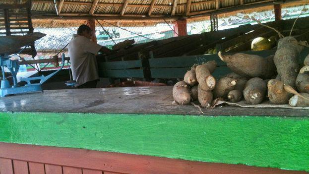 Pocas ofertas de productos en el Mercado Agropecuario Estatal (MAE) La Línea en la ciudad de Pinar del Río. (14ymedio)