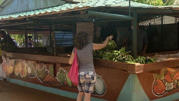 Mercado del Ejército Juvenil del Trabajo de la calle Tulipán. (14ymedio)