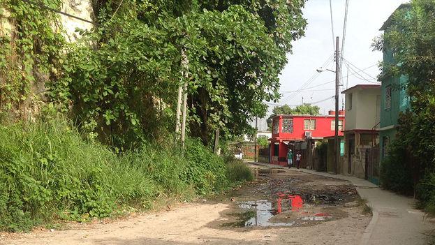 Los salideros de agua rellenan los baches de muchas calles. ¿Cuántos mosquitos habrán nacido de este charco?