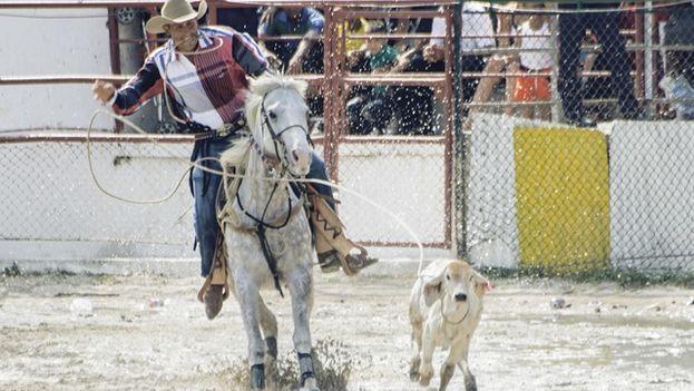 La técnica del rodeo