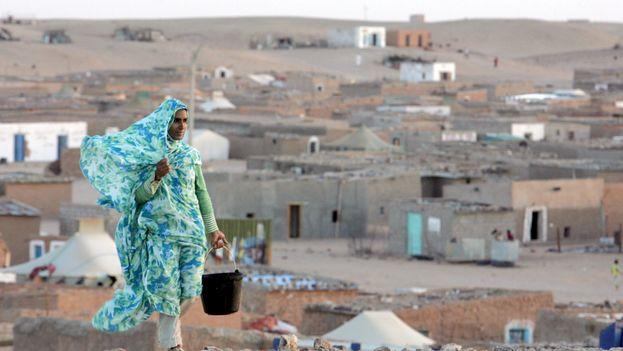 Del total de solicitantes, 52 proceden de los campos de refugiados del Sáhara Occidental y otros dos de Cuba, donde se han graduado en Medicina. (EFE)