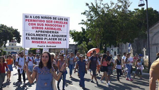 Una activista porta un letrero contra el maltrato animal en Cuba. (14ymedio)