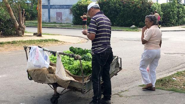 Una carretilla vende de manera ambulante verduras frescas. (14ymedio)