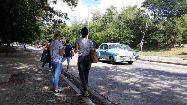 Los conductores iban por el lado izquierdo de las calles, alejados de las aceras, donde esperaban los clientes. (14ymedio)