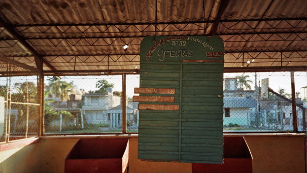 Las tarimas vacías o con un solo producto repetido se han convertido en una escena frecuente en los mercados agrícolas cubanos. (Klaussi)