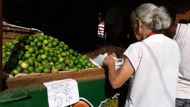 De costar hasta dos pesos un solo limón han pasado ahora a la rebaja de cinco pesos la libra. (14ymedio)