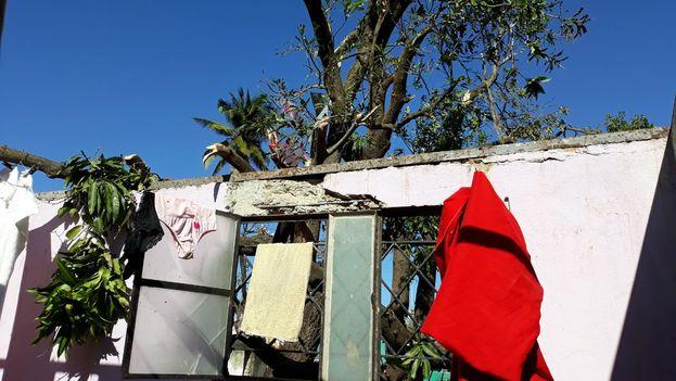 El cuarto de Hilda y la mata de Mango. (14ymedio)