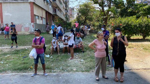 Muchos cubanos siguen lanzándose a las calles para hacer colas, acarrear y almacenar comida. (14ymedio)