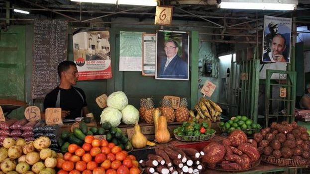 cuentapropista, vendedor de viandas, vegetales y hortalizas, la habana, cuba
