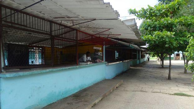 El área dedicada a los productos cárnicos en el mercado agrícola central de la ciudad de Camagüey. (14ymedio)