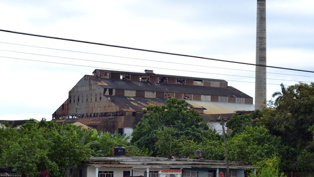 La zafra anterior fue la peor en más de un siglo de una industria que décadas atrás había sido la locomotora económica de la Isla. (Michael Anranter)
