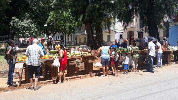 Ante el temor de una inflación las autoridades han topado los precios de varios productos agrícolas. (14ymedio)