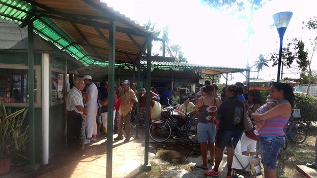 Una larga fila de personas se extiende frente al punto de venta Las Palmas en la ciudad de Camagüey. (14ymedio)
