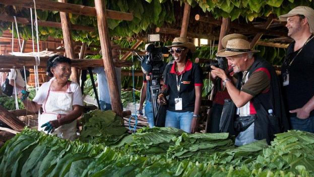 El programa de actividades incluye visitas a plantaciones de tabaco en la región de Pinar del Río, a las fábricas de tabacos y clases magistrales de torcer puros. (Habanos)