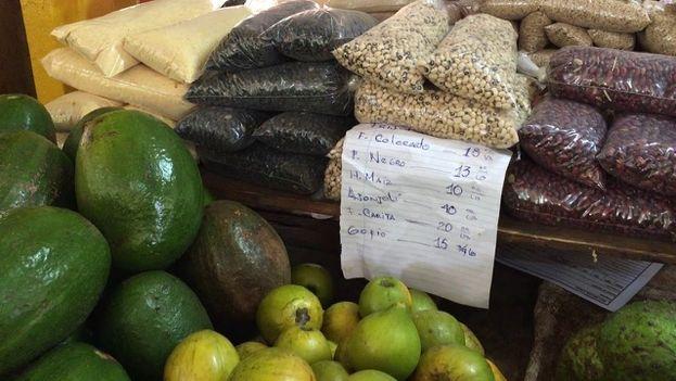 """La época del aguacate ha terminado, pero algunos se atreven a vender los últimos remanentes de un producto que se consume fundamentalmente en verano. Los frijoles colorados también son una alternativa si no se consiguen unos negros, que no sean """"pellejudos"""" o insípidos. Los precios de ambos granos han oscilado en las últimas semanas entre los 10 y 18 pesos cubanos."""