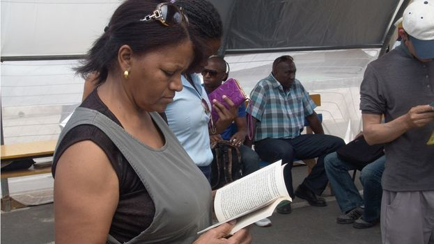 Una mujer revisa un volumen durante la Feria del Libro de La Habana. (14ymedio)