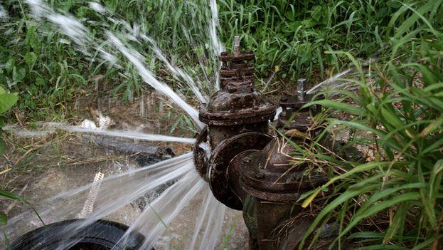 Por los salideros y las tuberías rotas se despilfarra buena parte del preciado líquido (Silvia Corbelle)