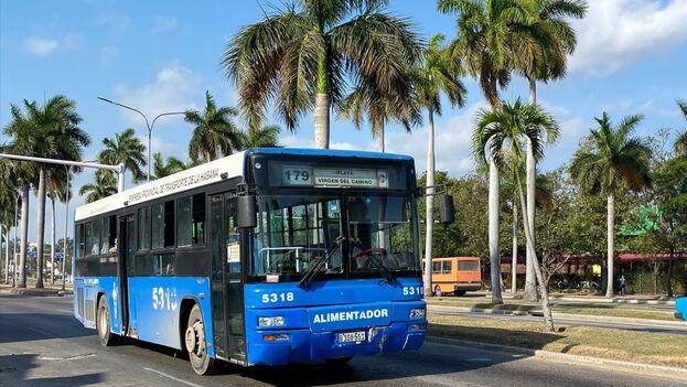 La suspensión del transporte urbano está vigente desde este lunes. (14ymedio)