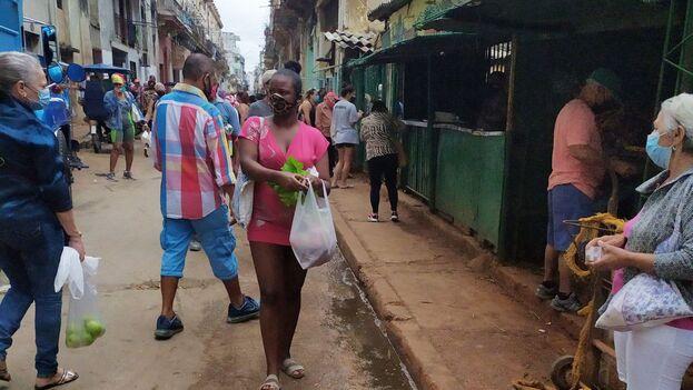 Mercado privado de la calle 19 y B en El Vedado, La Habana. (14ymedio)