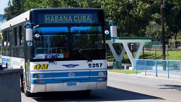 Ruta 67 (Foto: Luz Escobar)