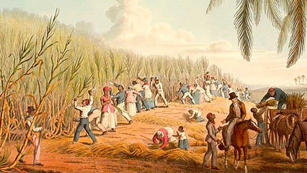 El latifundismo de América Latina no favoreció la creación de una clase interesada en la prosperidad de su tierra.