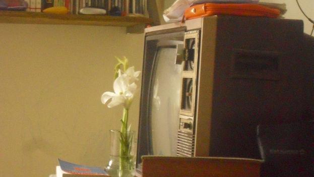 Entre la reunión y la televisión, está última le gana el pulso (Foto: Luz Escobar)