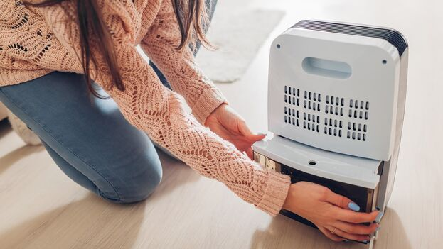 Tener aire limpio en casa es esencial, y para ello, los deshumidificadores se convierten en los principales aliados