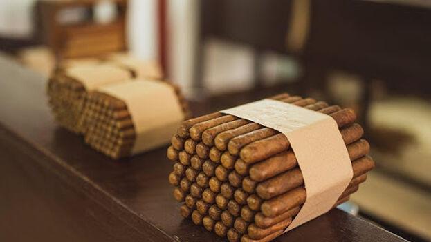 Se necesitan hasta seis tipos de hojas de tabaco diferentes para elaborar un puro cubano
