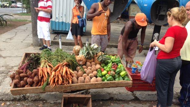 Los carretilleros mantienen su negocio a flote en la Cuba raulista. (14ymedio)