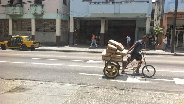 Un hombre transporta los materiales de construcción. (14ymedio)