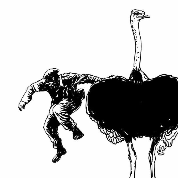 Algunos 'memes' reeditan la famosa foto de Fidel Castro lanzándose de un tanque, pero descendiendo esta vez de un avestruz. (Alen Lauzán)
