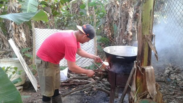 González cocinando arroz para sus puercos. (14ymedio)