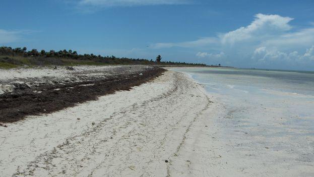 Playa de Cayo Coco, en Jardines del Rey