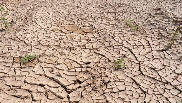 Sequía. (CC)