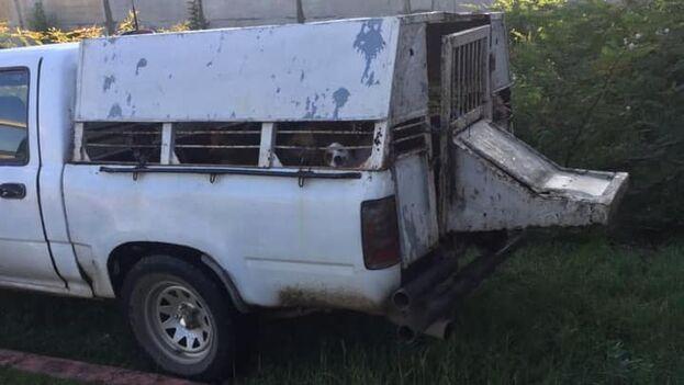 Vehículo de zoonosis para la recogida de animales callejeros.