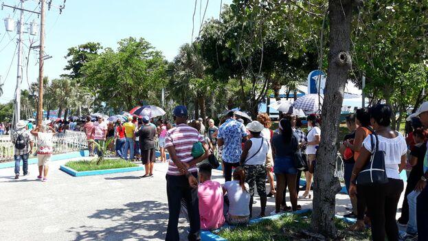 Los clientes acudieron con paraguas para cubrirse del sol veraniego que caía sobre La Habana.  (14ymedio)