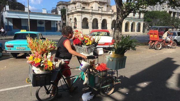 La venta ambulante de flores sigue siendo, junto a la de dulces y chucherías, una de las más comunes en las calles de La Habana. (14ymedio)