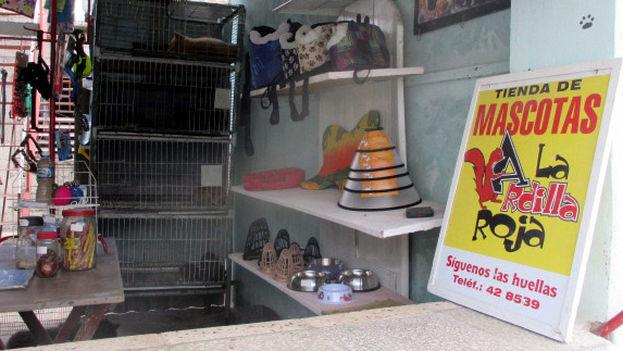 La ardilla roja es fruto de la iniciativa de un empresario privado. (Fernando Donate/14ymedio)