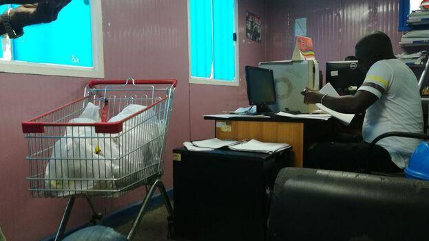 La cantidad de solicitudes diarias que tramitan en esta oficina puede llegar a unas 60. (14ymedio)