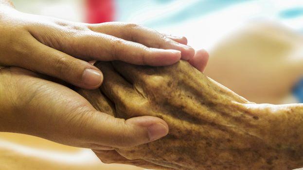"""La licencia de """"cuidador de enfermos, personas con discapacidad y ancianos"""" habilita para dedicarse a acompañar a los pacientes en hospitales. (CC/Pixabay)"""