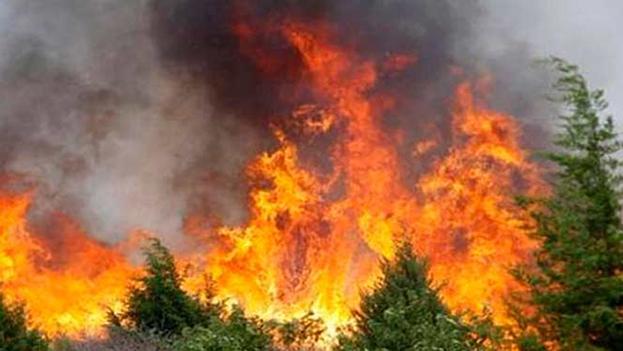 La prensa oficial informó del incendio cuando ya había sido controlado. (Archivo)